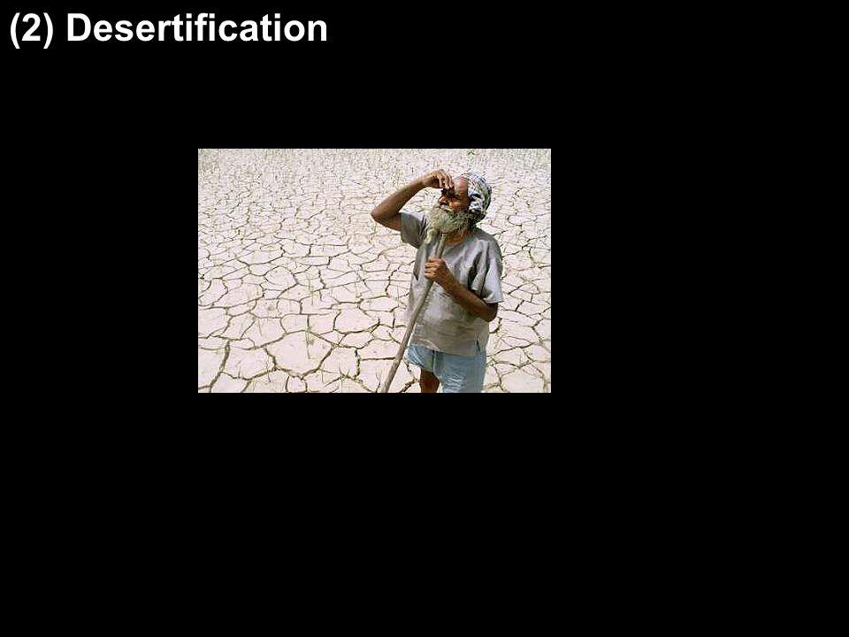 (2) Desertification