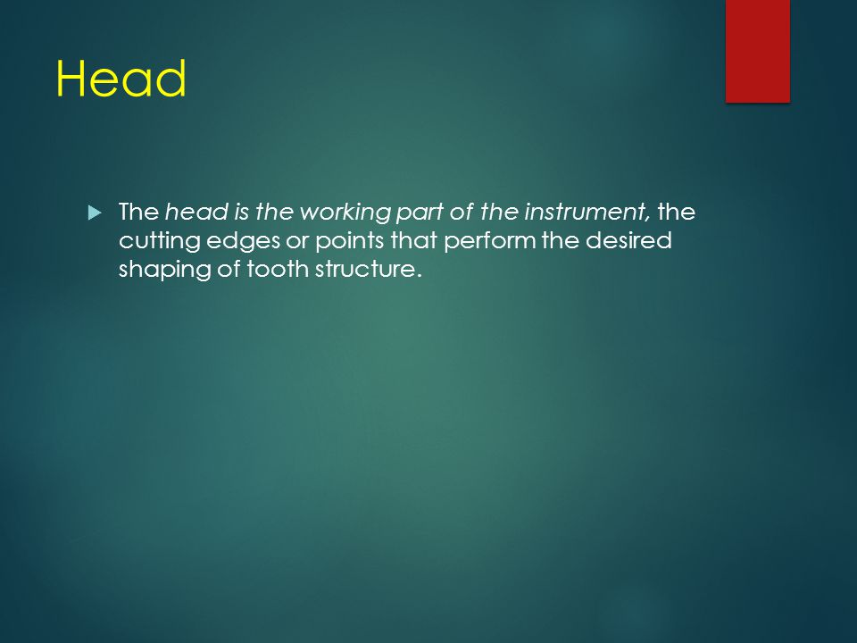 Head  The head is the working part of the instrument, the cutting edges or points that perform the desired shaping of tooth structure.