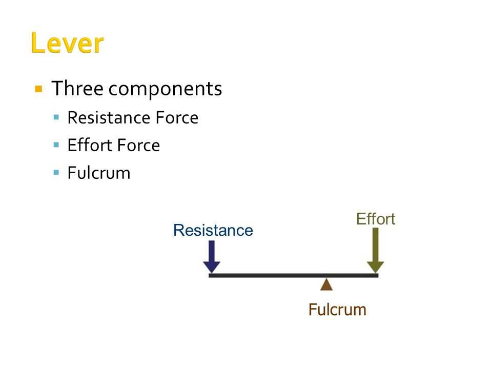  Three components  Resistance Force  Effort Force  Fulcrum Resistance Effort Fulcrum