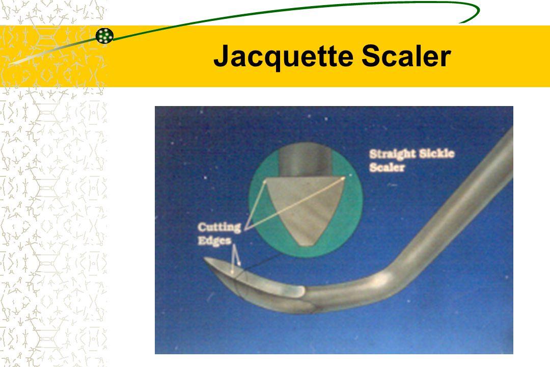 20 Jacquette Scaler