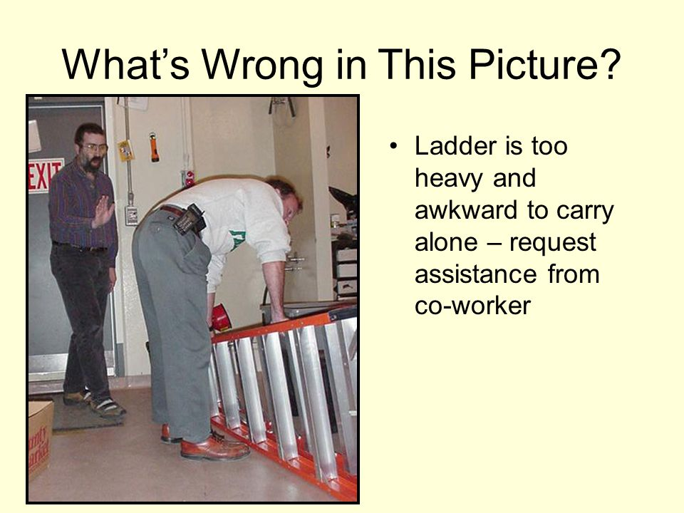 Ladder is too heavy and awkward to carry alone – request assistance from co-worker What's Wrong in This Picture?