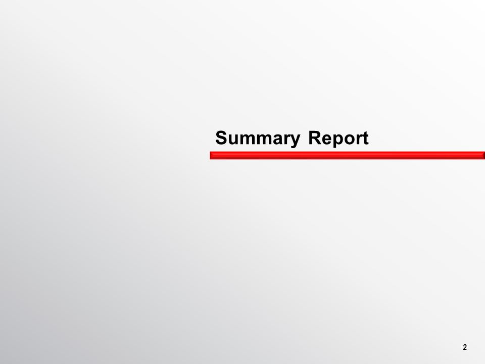 Summary Report 2