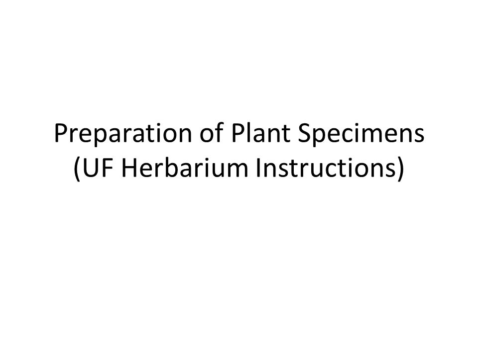 Preparation of Plant Specimens (UF Herbarium Instructions)