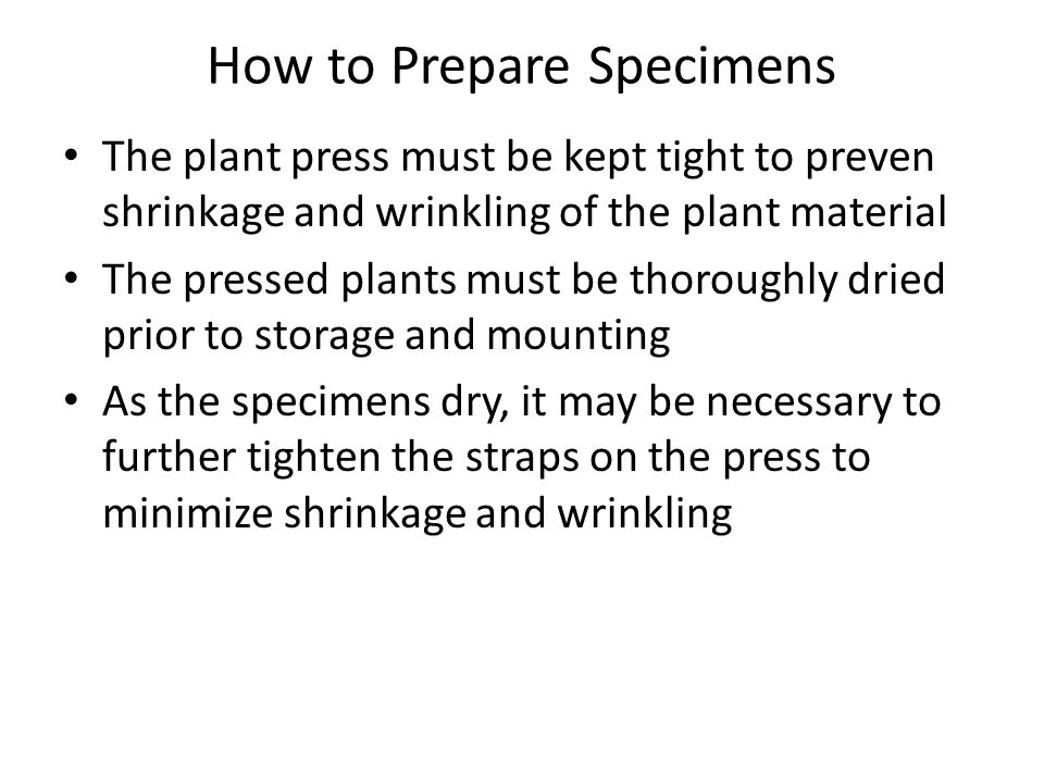 How to Prepare Specimens The plant press must be kept tight to preven shrinkage and wrinkling of the plant material The pressed plants must be thoroughly dried prior to storage and mounting As the specimens dry, it may be necessary to further tighten the straps on the press to minimize shrinkage and wrinkling