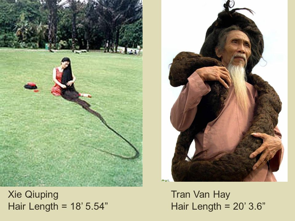 "Xie Qiuping Hair Length = 18' 5.54"" Tran Van Hay Hair Length = 20' 3.6"""