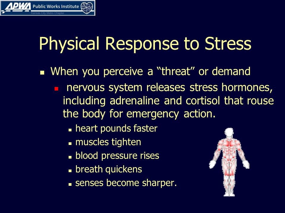 Physical Response to Stress When you perceive a threat or demand nervous system releases stress hormones, including adrenaline and cortisol that rouse the body for emergency action.