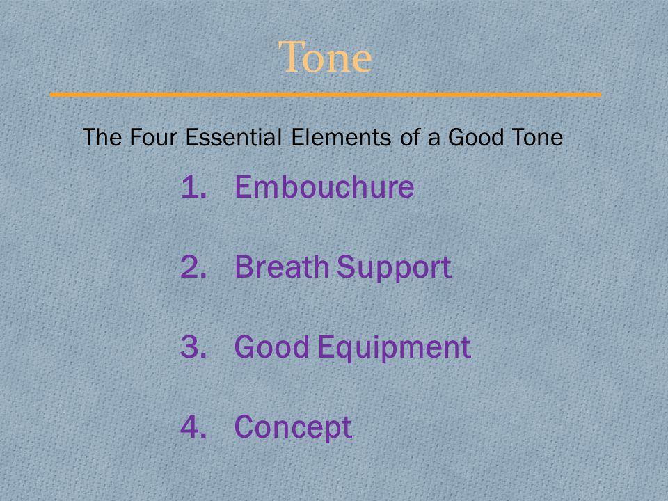 Flute Embouchure 1.Tight Corners 2.Flat Chin 3.Loose Lips 4.Small Aperture