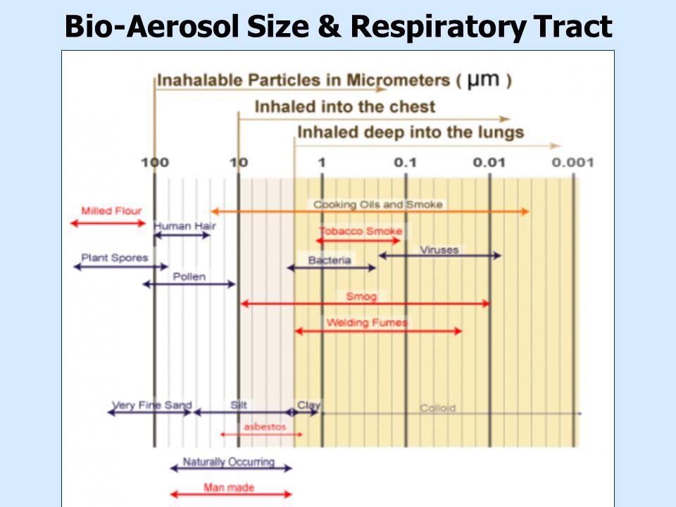 Bio-Aerosol Size & Respiratory Tract