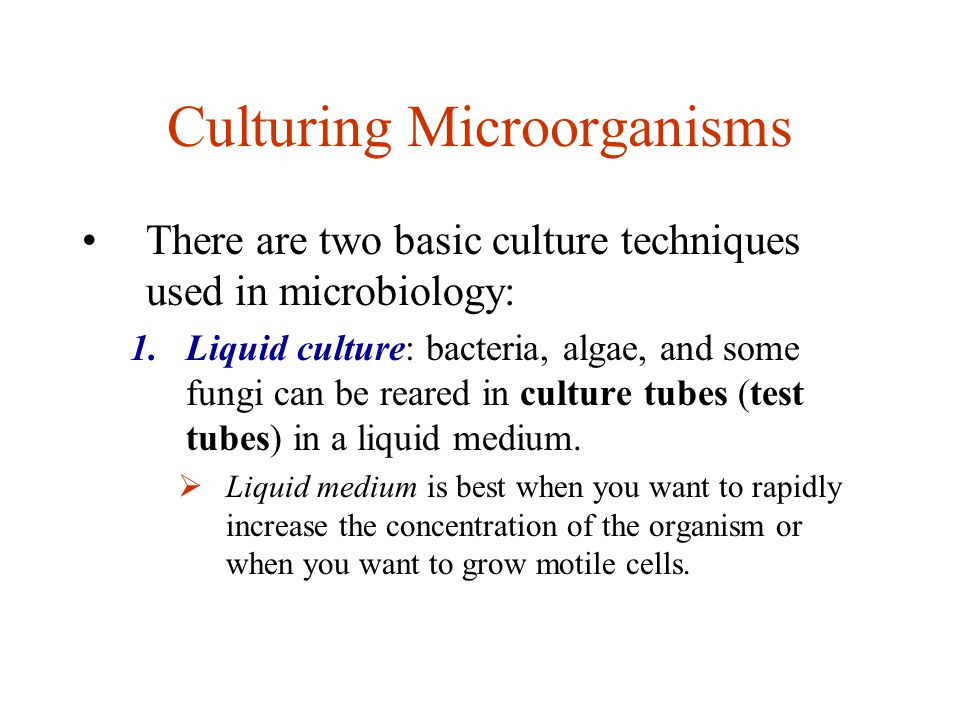 Culturing Microorganisms There are two basic culture techniques used in microbiology: 1.Liquid culture: bacteria, algae, and some fungi can be reared