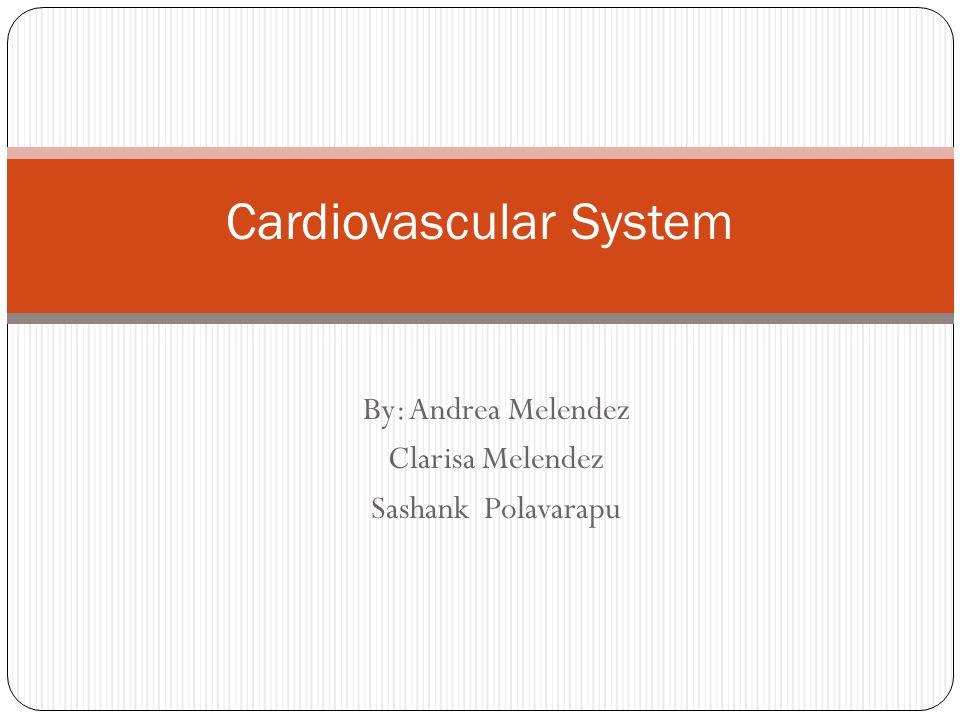By: Andrea Melendez Clarisa Melendez Sashank Polavarapu Cardiovascular System