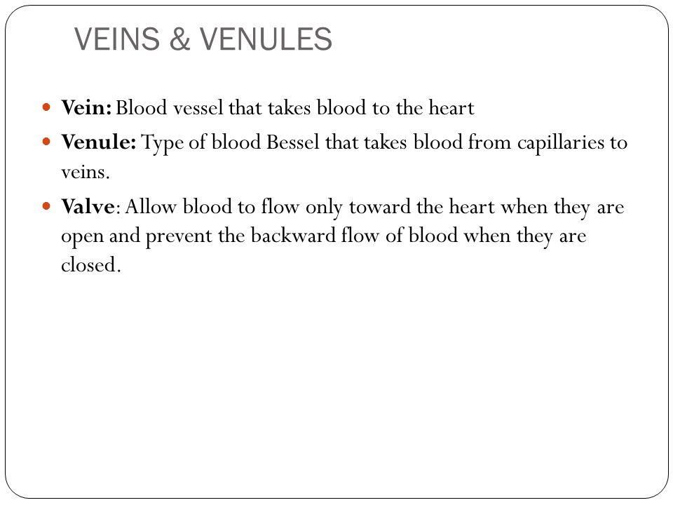 VEINS & VENULES Vein: Blood vessel that takes blood to the heart Venule: Type of blood Bessel that takes blood from capillaries to veins. Valve: Allow