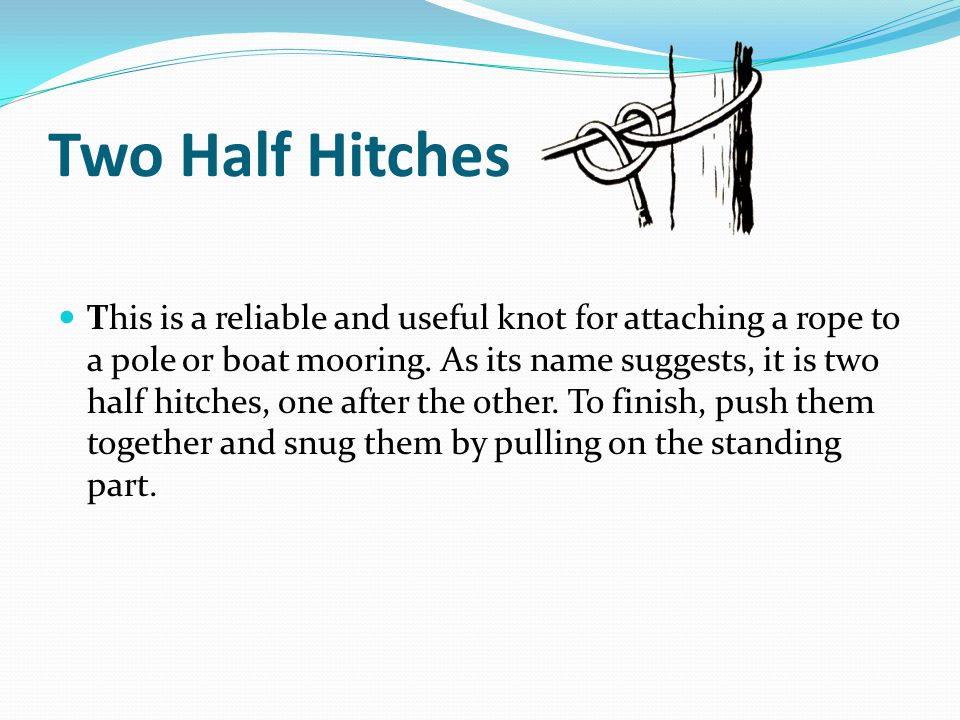 Two Half Hitches This is a reliable and useful knot for attaching a rope to a pole or boat mooring.
