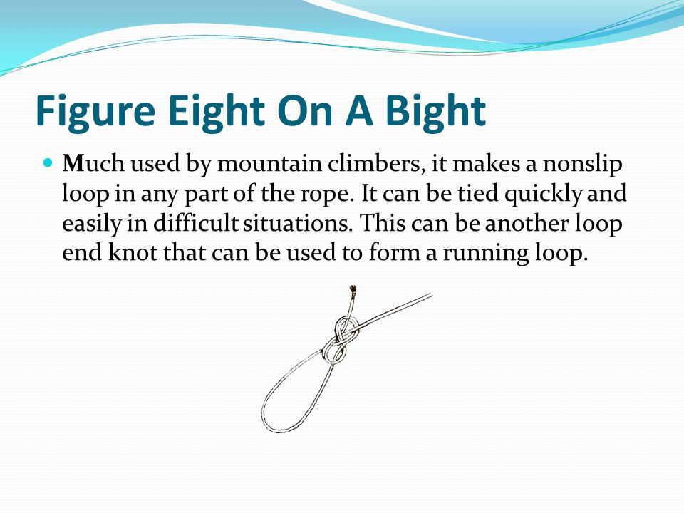Figure Eight On A Bight Much used by mountain climbers, it makes a nonslip loop in any part of the rope.