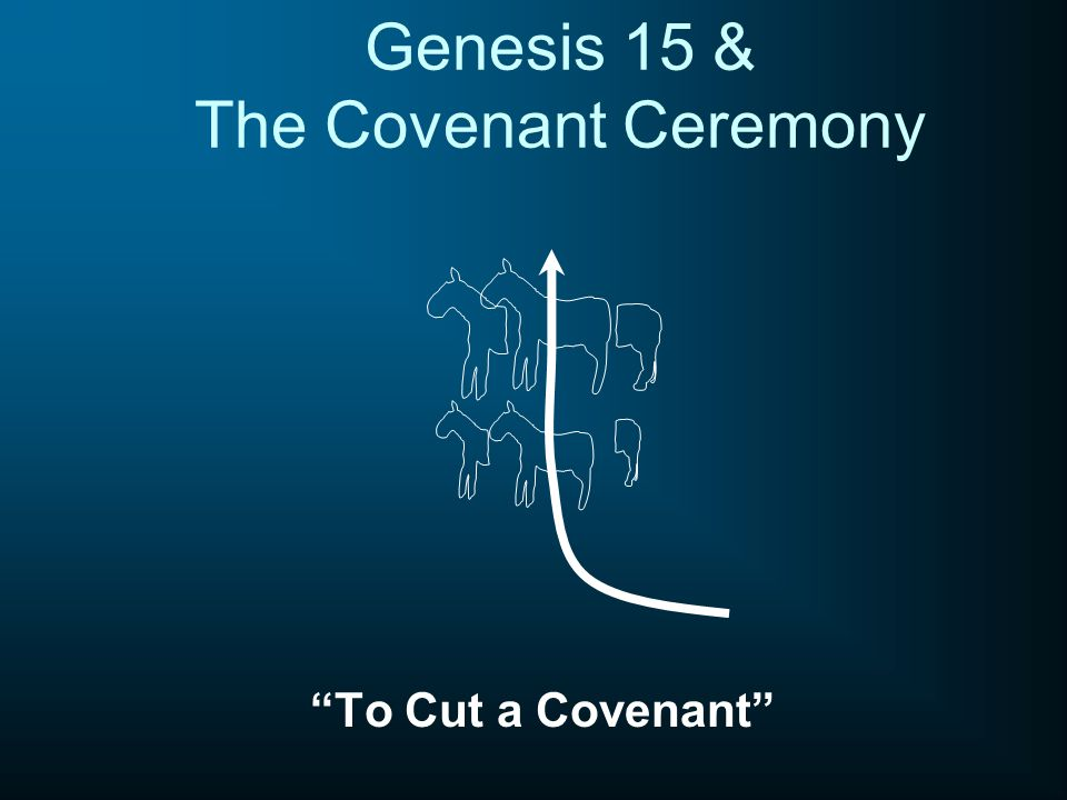 "Genesis 15 & The Covenant Ceremony ""To Cut a Covenant"""