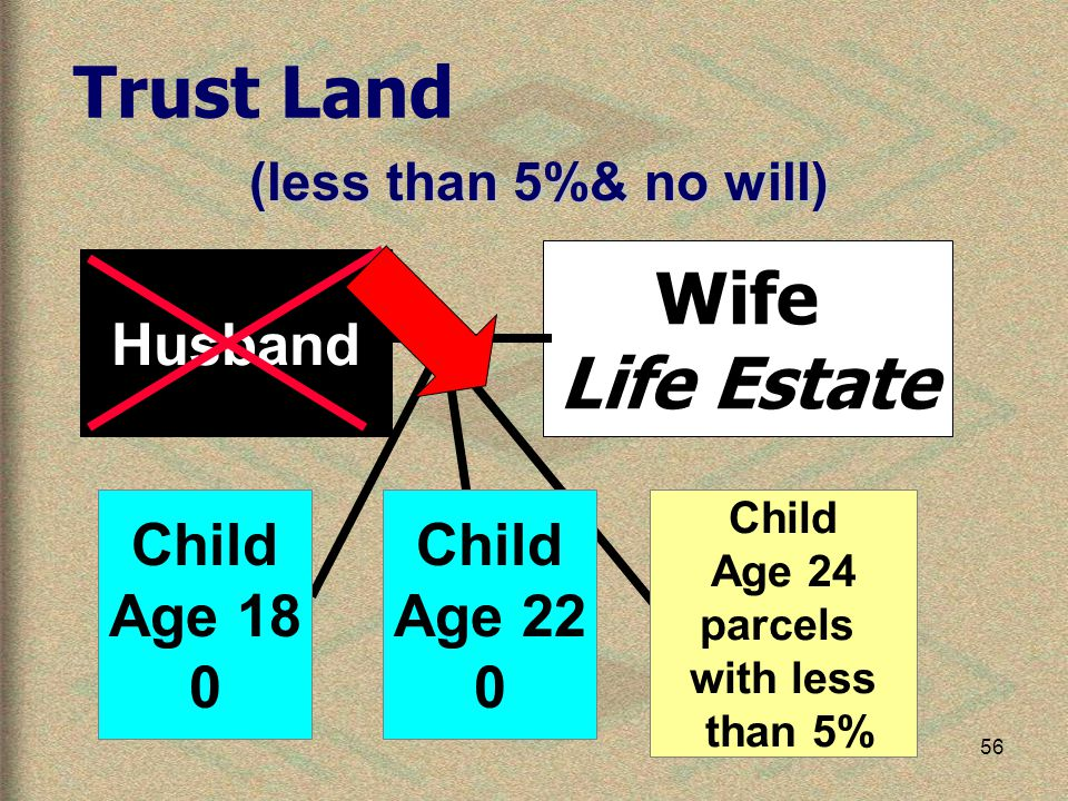 56 Wife Life Estate Husband Trust Land (less than 5%& no will) Child Age 18 0 Child Age 22 0 Child Age 24 parcels with less than 5%