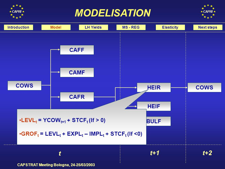 CAPRI CAPSTRAT Meeting Bologna, 24-25/03/2003 t t+1t+2 COWS BULF HEIF HEIR CAMR CAFR CAMF CAFF LEVL t = YCOW t+1 + STCF t (If > 0) GROF t = LEVL t + EXPL t – IMPL t + STCF t (If <0) IntroductionModelLH YieldsMS - REGElasticityNext steps MODELISATION