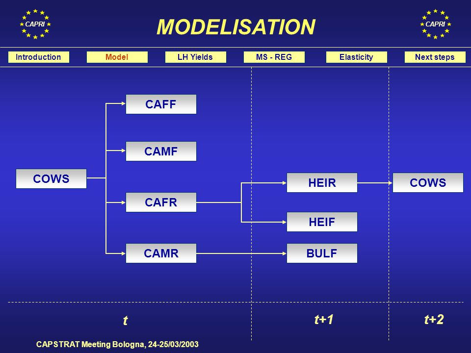 CAPRI CAPSTRAT Meeting Bologna, 24-25/03/2003 Use MS reproductive coefficients IntroductionModelLH YieldsMS - REGElasticityNext steps FROM MS TO REGIONS Estimate the regional trade: heads and weights Estimate the regional LEVL according to production system: FP MS,i : BRED MS,i = FP RU,i : BRED RU,i where: MS = member state RU = region i = livestock fattening activity FP = length of the fattening period BRED = number of yearly production cycles LEVL = animal activity level HERD = herd size at the end of the year