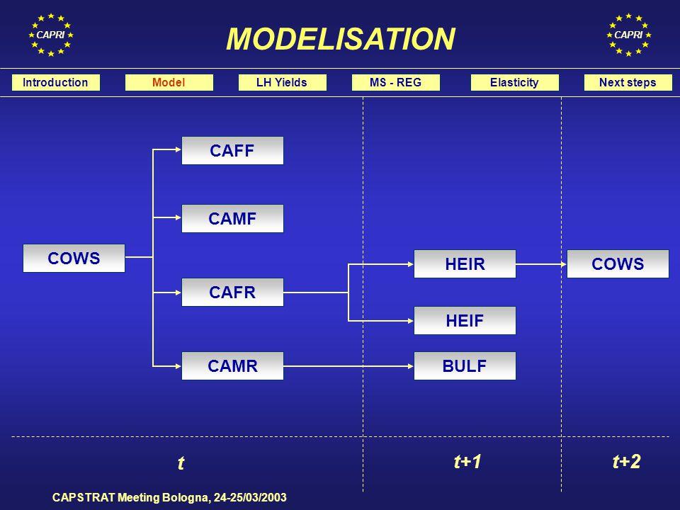 CAPRI CAPSTRAT Meeting Bologna, 24-25/03/2003 IntroductionModelLH YieldsMS - REGElasticityNext steps MODELISATION