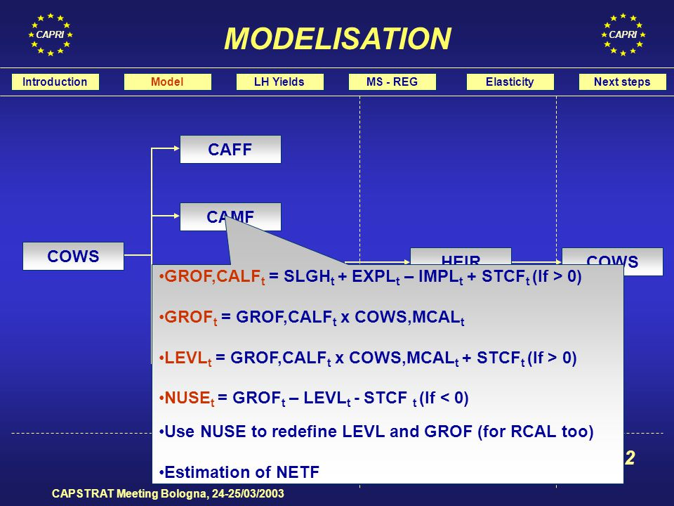 CAPRI CAPSTRAT Meeting Bologna, 24-25/03/2003 t t+1t+2 COWS BULF HEIF HEIR CAMR CAFR CAMF CAFF GROF,CALF t = SLGH t + EXPL t – IMPL t + STCF t (If > 0) GROF t = GROF,CALF t x COWS,MCAL t LEVL t = GROF,CALF t x COWS,MCAL t + STCF t (If > 0) NUSE t = GROF t – LEVL t - STCF t (If < 0) Use NUSE to redefine LEVL and GROF (for RCAL too) Estimation of NETF IntroductionModelLH YieldsMS - REGElasticityNext steps MODELISATION