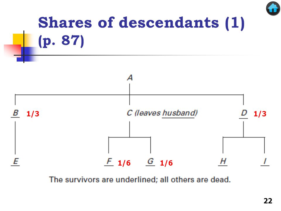 Shares of descendants (1) (p. 87) Hall 1/3 1/6 22
