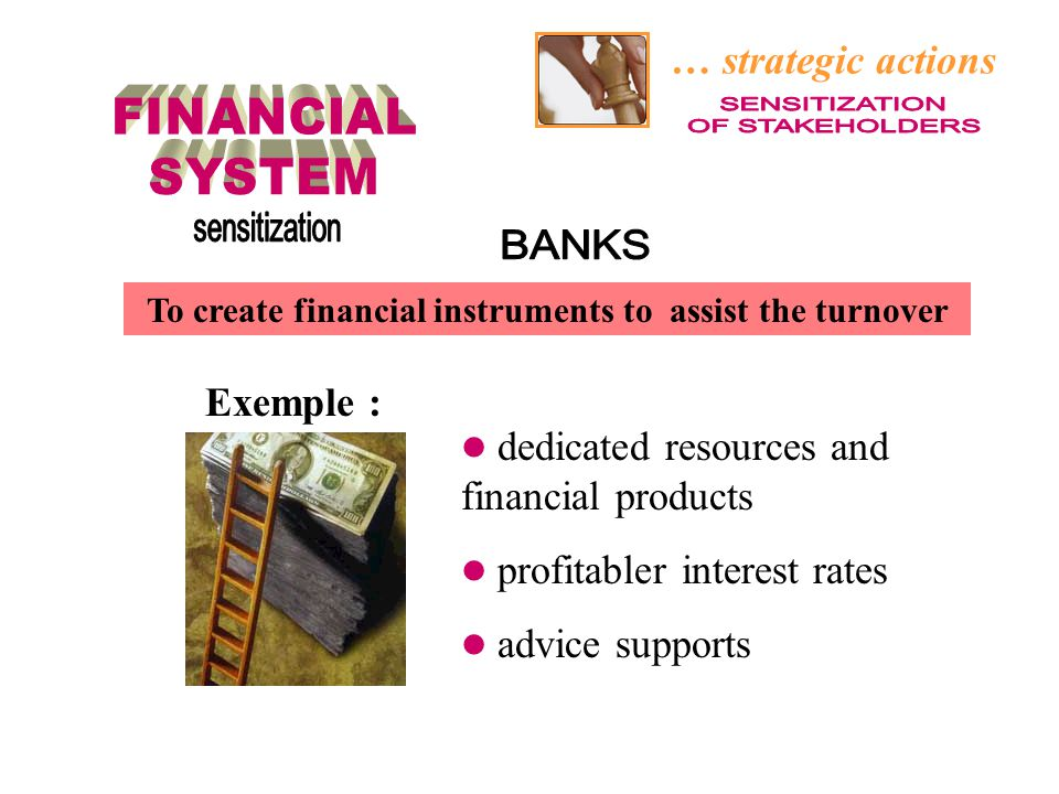 … strategic actions dedicated resources and financial products profitabler interest rates advice supports To create financial instruments to assist th