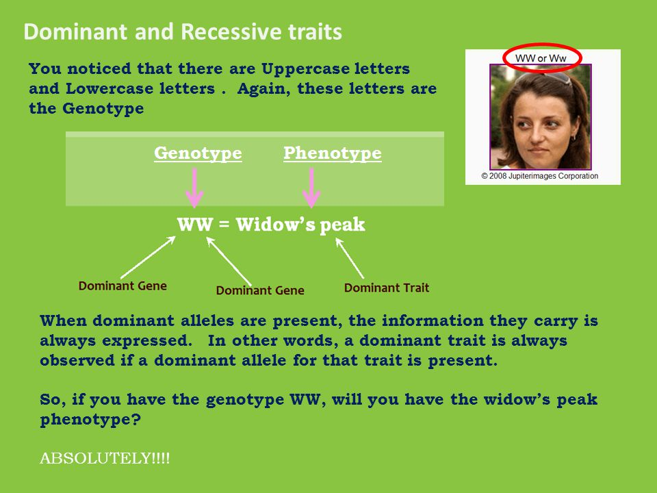  Now lets' talk about the Genotypes. See the letters above each picture.