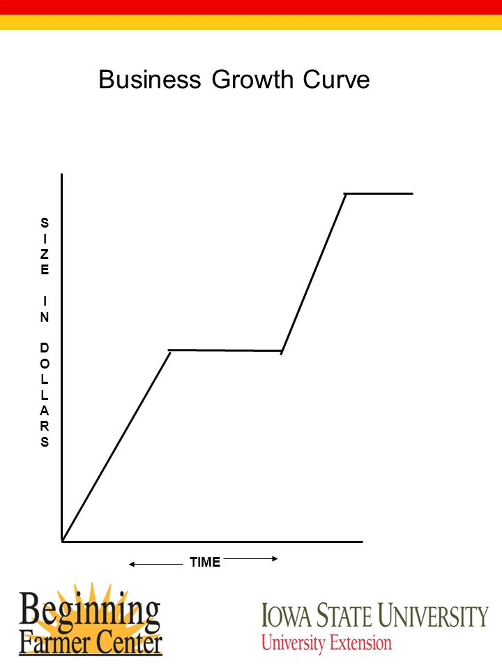 SIZEINDOLLARSSIZEINDOLLARS TIME Business Growth Curve