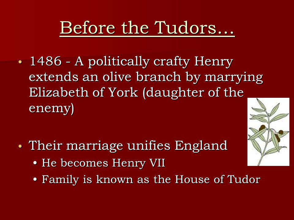 Before the Tudors… 1486 - A politically crafty Henry extends an olive branch by marrying Elizabeth of York (daughter of the enemy) 1486 - A politically crafty Henry extends an olive branch by marrying Elizabeth of York (daughter of the enemy) Their marriage unifies England Their marriage unifies England He becomes Henry VIIHe becomes Henry VII Family is known as the House of TudorFamily is known as the House of Tudor