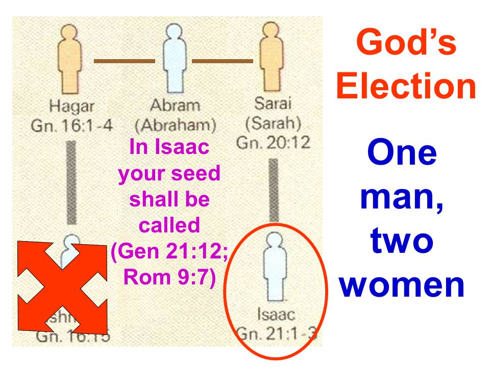 One man, two women God's Election In Isaac your seed shall be called (Gen 21:12; Rom 9:7)