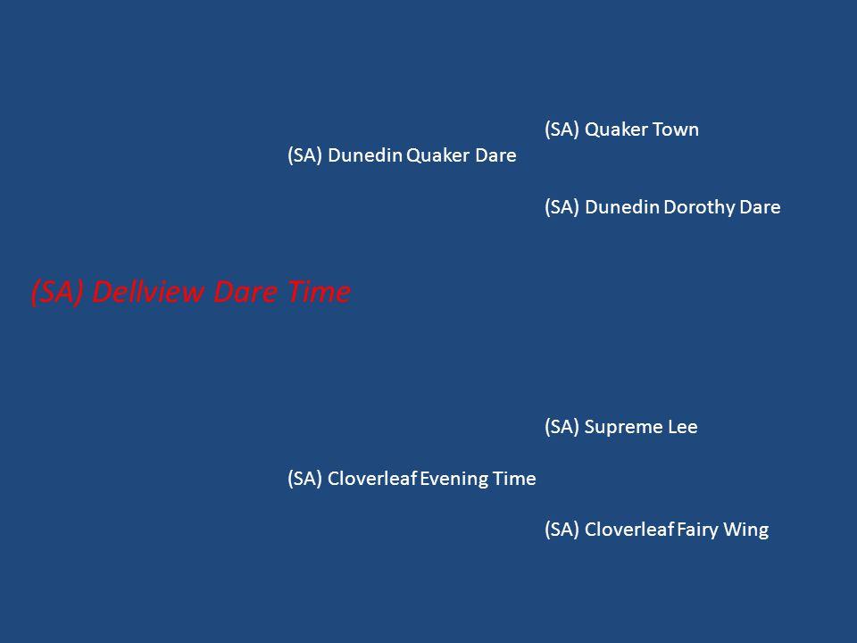 (SA) Quaker Town (SA) Dunedin Quaker Dare (SA) Dunedin Dorothy Dare (SA) Dellview Dare Time (SA) Supreme Lee (SA) Cloverleaf Evening Time (SA) Cloverl