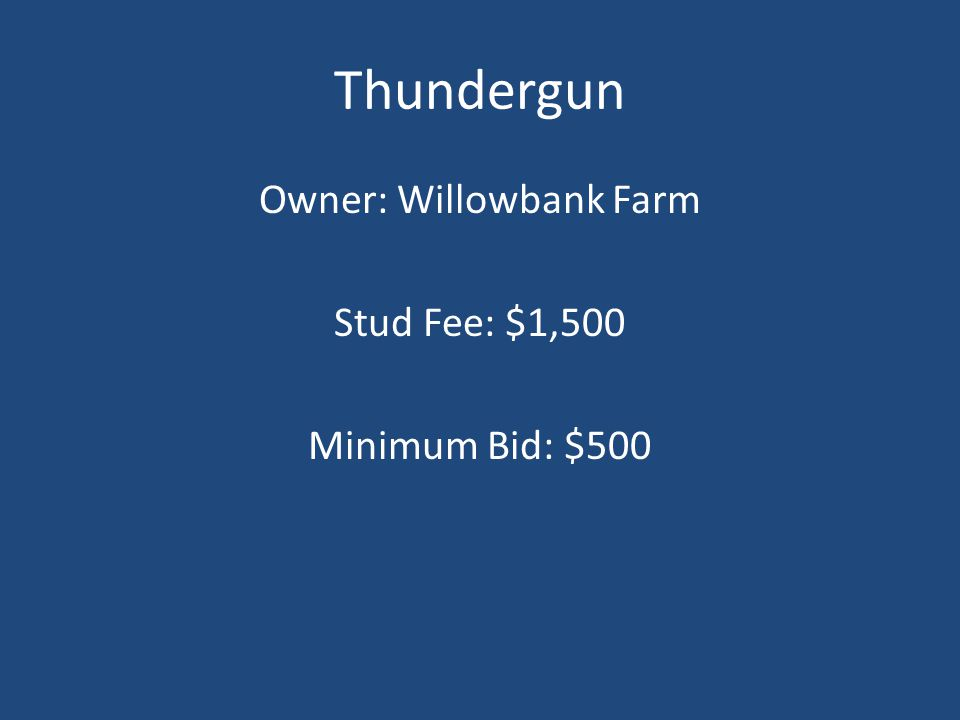 Thundergun Owner: Willowbank Farm Stud Fee: $1,500 Minimum Bid: $500