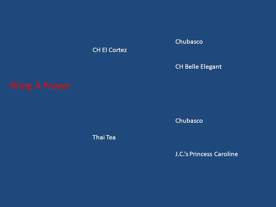 Chubasco CH El Cortez CH Belle Elegant Wing A Prayer Chubasco Thai Tea J.C.'s Princess Caroline