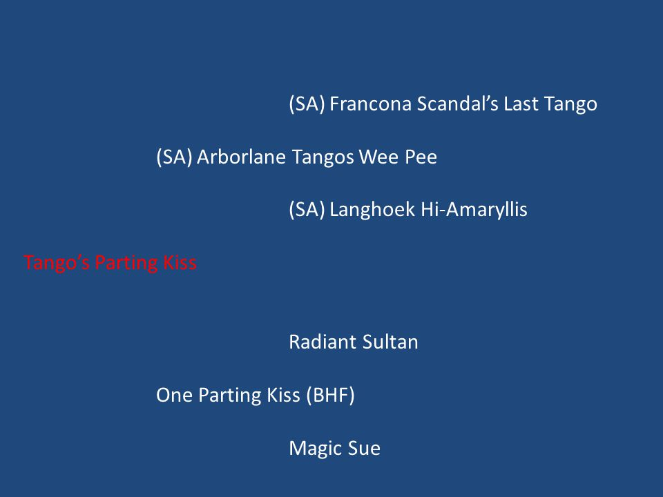 (SA) Francona Scandal's Last Tango (SA) Arborlane Tangos Wee Pee (SA) Langhoek Hi-Amaryllis Tango's Parting Kiss Radiant Sultan One Parting Kiss (BHF) Magic Sue