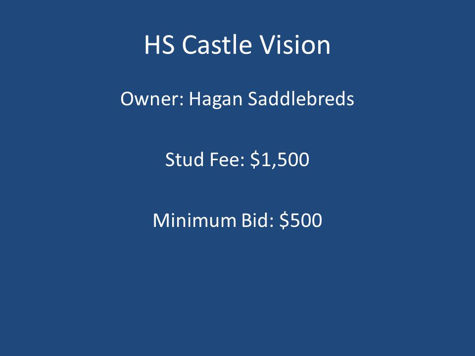 HS Castle Vision Owner: Hagan Saddlebreds Stud Fee: $1,500 Minimum Bid: $500