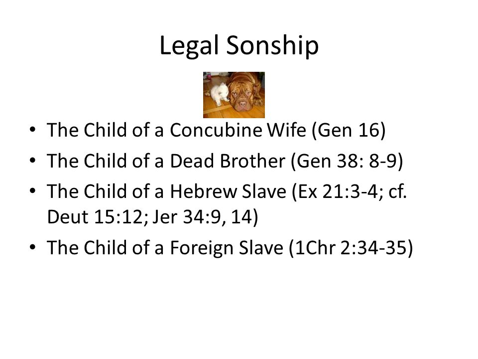 Legal Sonship The Child of a Concubine Wife (Gen 16) The Child of a Dead Brother (Gen 38: 8-9) The Child of a Hebrew Slave (Ex 21:3-4; cf.