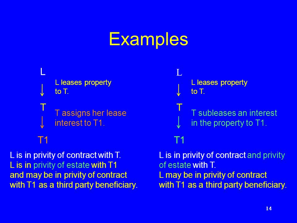 13 Privity of estate The landlord (and his or her direct or indirect assignee) and the tenant (and his or her direct or indirect assignee) are in priv