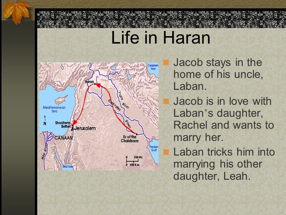Life in Haran Jacob stays in the home of his uncle, Laban. Jacob is in love with Laban ' s daughter, Rachel and wants to marry her. Laban tricks him i