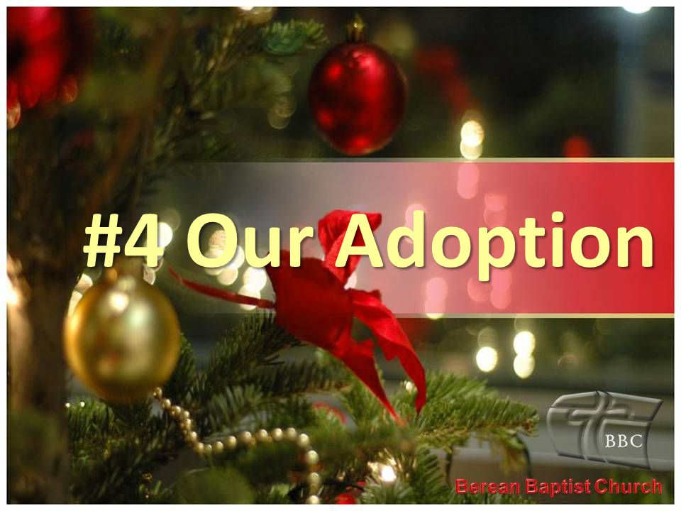 #4 Our Adoption