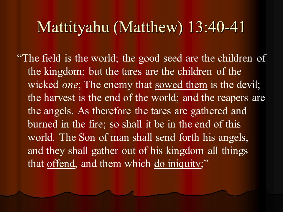 "Mattityahu (Matthew) 13:40-41 ""The field is the world; the good seed are the children of the kingdom; but the tares are the children of the wicked one"