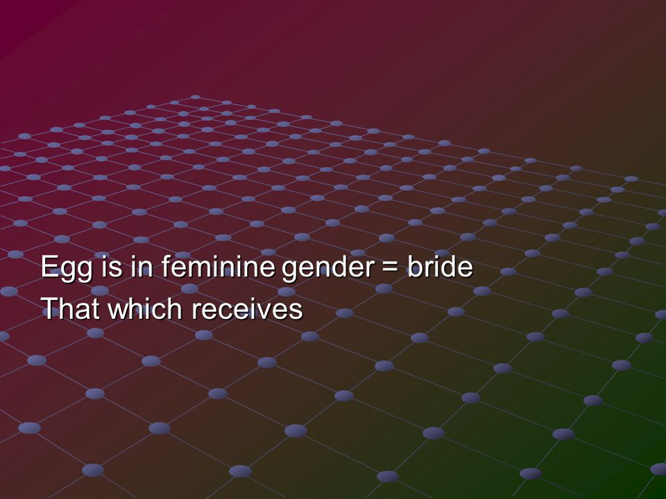 Egg is in feminine gender = bride That which receives