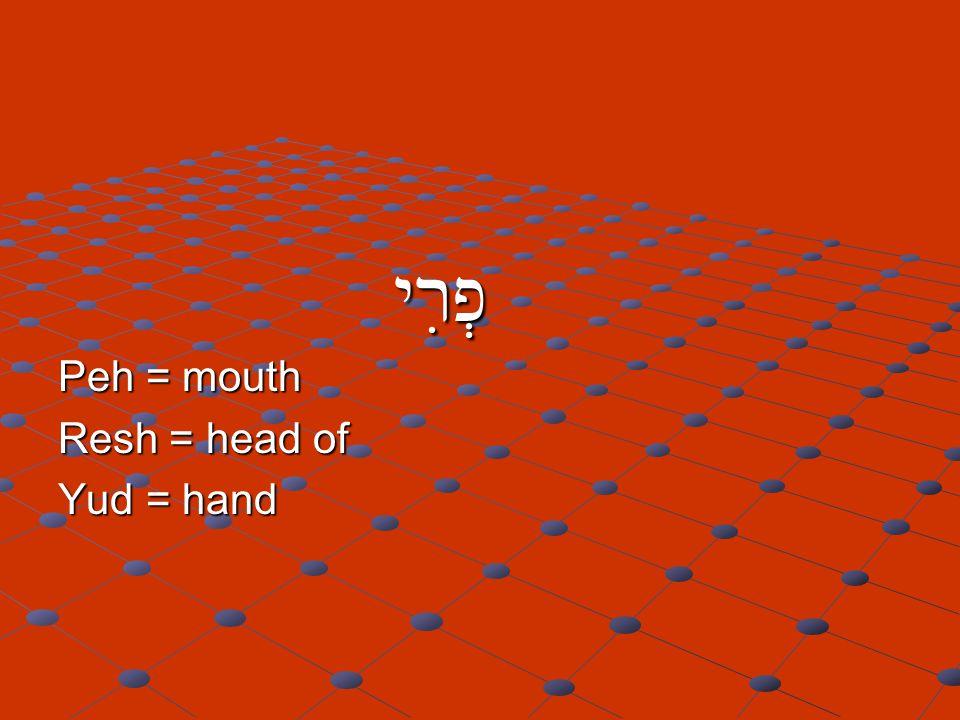 פְרִי פְרִי Peh = mouth Resh = head of Yud = hand