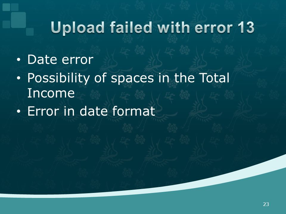 Date error Possibility of spaces in the Total Income Error in date format 23