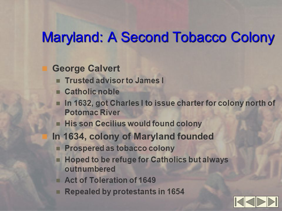 Maryland: A Second Tobacco Colony George Calvert Trusted advisor to James I Catholic noble In 1632, got Charles I to issue charter for colony north of Potomac River His son Cecilius would found colony In 1634, colony of Maryland founded Prospered as tobacco colony Hoped to be refuge for Catholics but always outnumbered Act of Toleration of 1649 Repealed by protestants in 1654