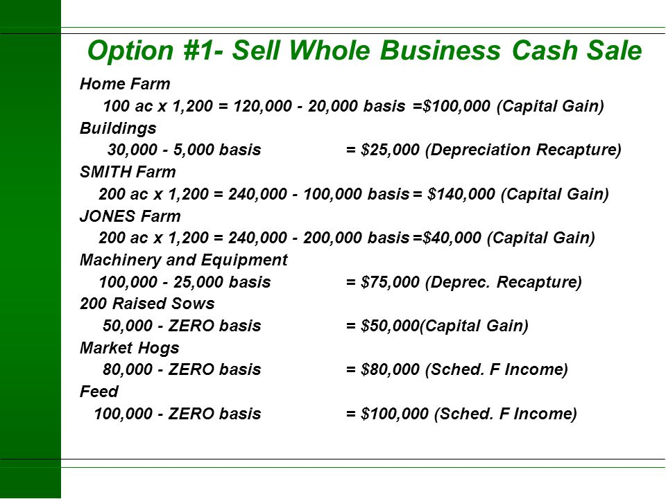 Income Taxes Capital Gain - Max 20% FED rate - 10% on Income in the 15% bracket - 20% for Income above the 15% rate Ordinary Income (Married Joint 199