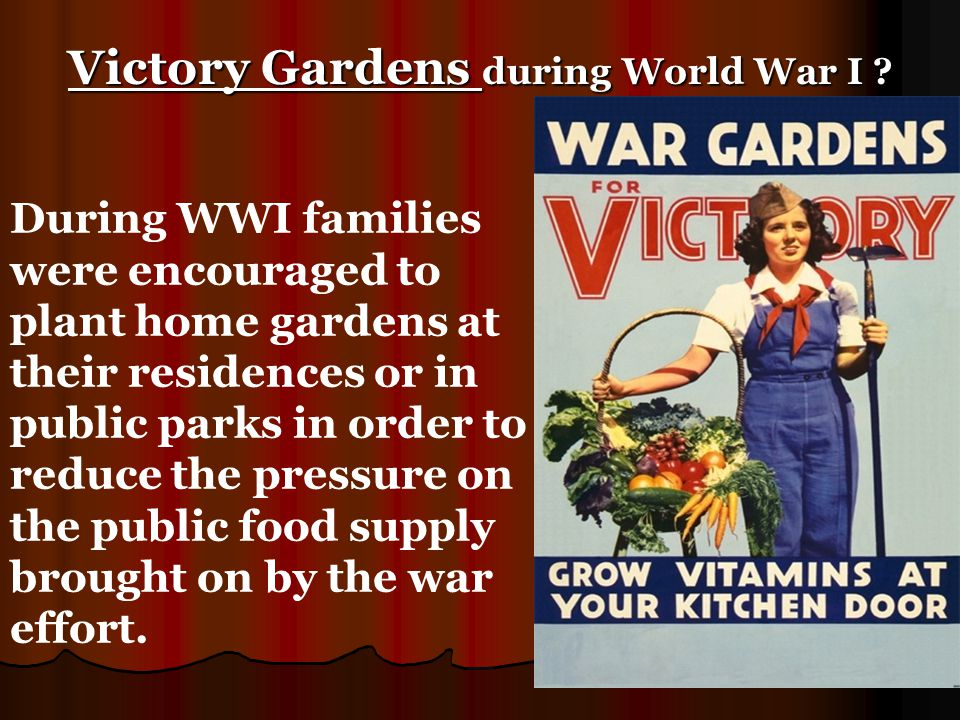 Victory Gardens during World War I ? During WWI families were encouraged to plant home gardens at their residences or in public parks in order to redu