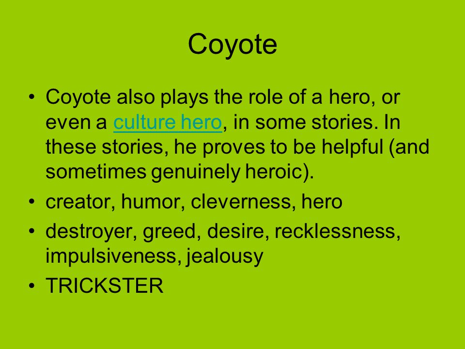 Coyote Coyote also plays the role of a hero, or even a culture hero, in some stories. In these stories, he proves to be helpful (and sometimes genuine