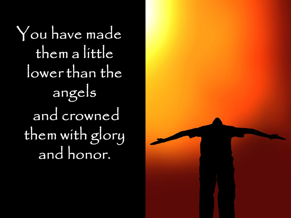 You have made them a little lower than the angels and crowned them with glory and honor.