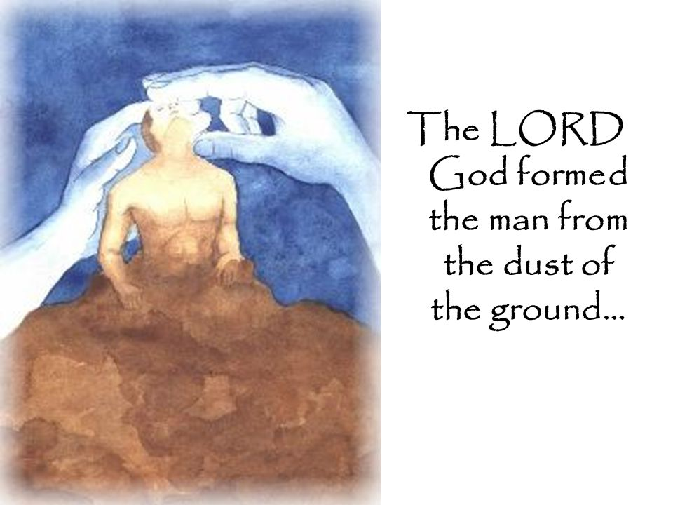 The LORD God formed the man from the dust of the ground…