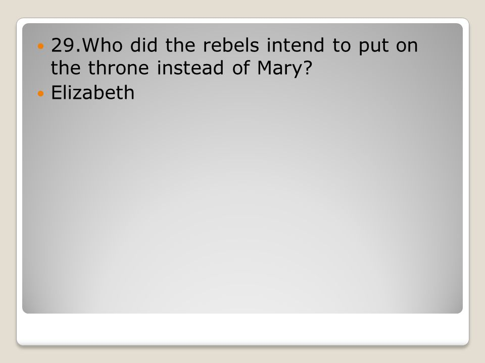 29.Who did the rebels intend to put on the throne instead of Mary Elizabeth
