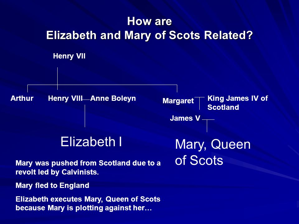 How are Elizabeth and Mary of Scots Related? Henry VII ArthurHenry VIII Margaret King James IV of Scotland James V Mary, Queen of Scots Anne Boleyn El